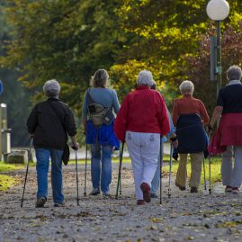 Strefa Aktywnego Seniora